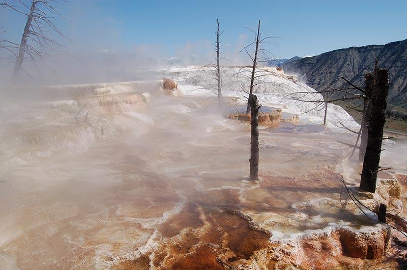 Yellowstone geyser beautiful photo